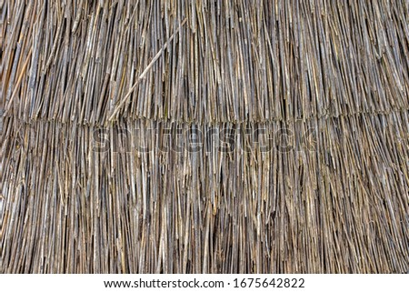 Abstract Background Texture Of A Thatched Roof, Thatch or Thatching Royalty-Free Stock Photo #1675642822