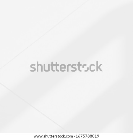 Background shadow and Nature shadows.Gray shadows trees leaf on white wall. Abstract shadows nature concept blurred background.White and Black. Texture shadows. #1675788019
