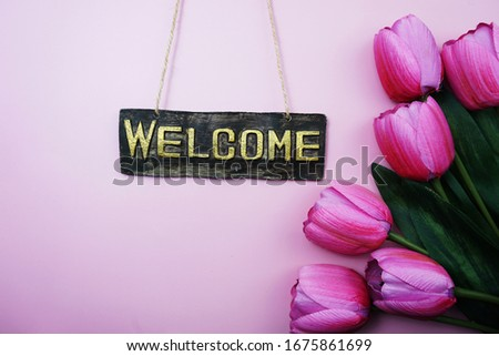 Welcome Sign and Tulip Flower Blooming Decoration on pink background