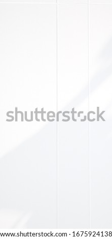 Background shadow and Nature shadows. Gray shadows trees leaf on white wall. Abstract shadows nature concept blurred background. White and Black. Texture shadows. #1675924138