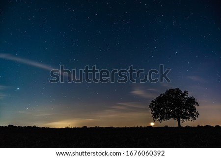 Starriness above field at night, silhouette of tree under starry sky #1676060392