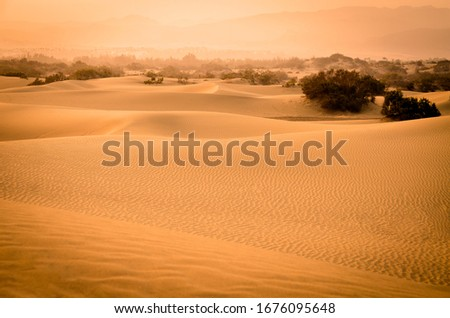 Desert of Maspalomas full of dunes and some bushes. In the background there are few volcanos. Gran Canaria. Canary Islands, Spain. #1676095648