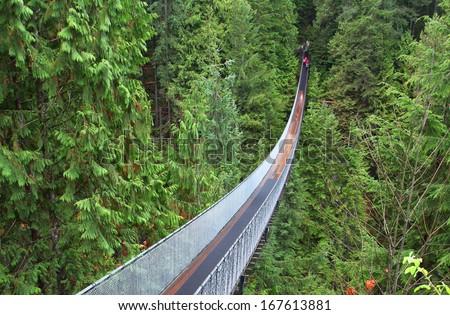 Capilano suspension bridge near Vancouver in Canada Royalty-Free Stock Photo #167613881