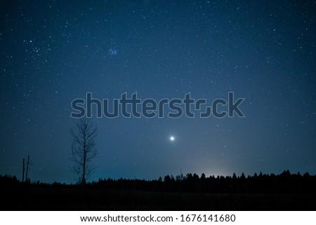 starry night in the field