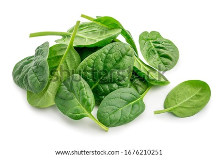 Pile of fresh green baby spinach leaves isolated  on white background. Close up #1676210251