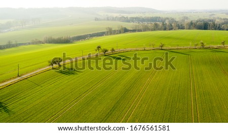 Green cultivated farm land near highway road with mountains on the background. Panoramic view on a field. #1676561581