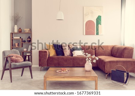 Comfortable brown velvet sofa with pillows in elegant living room interior #1677369331