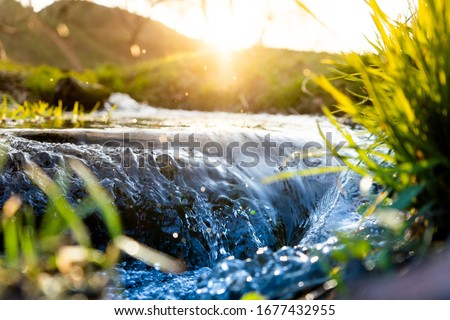 Spring background Stream of water in the forest