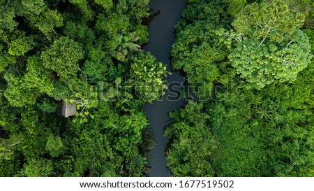 Aerial photo of amazon rain forest jungle in Peru