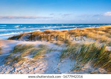 Stormy Baltic Sea, Beach with Coastal Dunes, Darss Peninsula, Germany Royalty-Free Stock Photo #1677942316