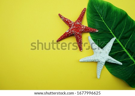 Summer Background concept with green leave and starfish decoration on yellow background