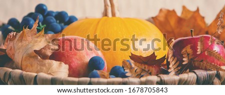 Autumn background with pumpkin. Thanksgiving Day. Selective focus. nature.