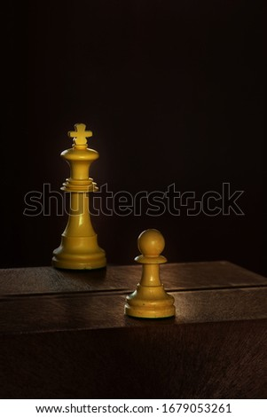 King and chess pawn in the darkness #1679053261