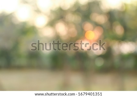 Abstract nature background with bokeh #1679401351