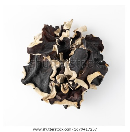 Dry black fungus, tree ear or wood ear mushroom isolated on white background. Dried auricularia polytricha also known as cloud ear, black mushroom, jelly fungus or cloud ear fungus #1679417257