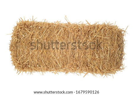 isolated bale of hay on white #1679590126
