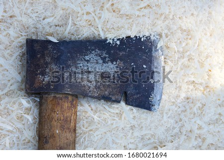 Detail of an old hatchet lying in a pile of light coloured sawdust showing the rust and sharp edge. #1680021694