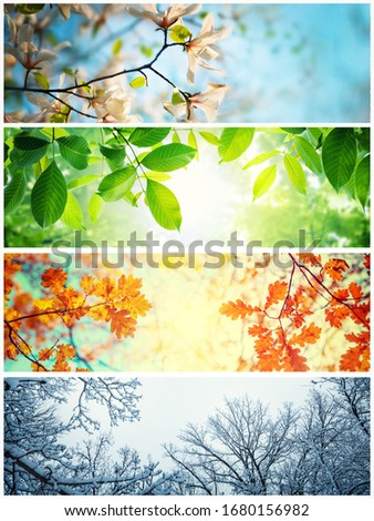 Four seasons. A pictures that shows four different pictures representing the four seasons: winter, spring, summer and autumn.  Royalty-Free Stock Photo #1680156982