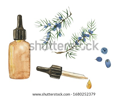 Essential oil of juniper in glass brown bottle isolated on white background. Watercolor hand drawing illustration. Clip art for medicine, healthy food, covers, cards.