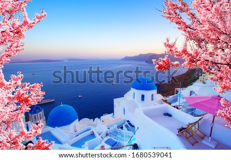 Beautiful view of Oia, Santorini, Greece with pink blossoms flowers at beautiful spring sunset. Vintage colored picture. Business, Love and travel concept