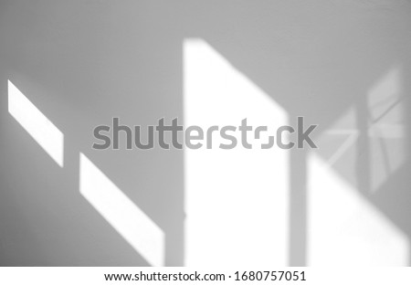 Window natural shadow overlay effect on white texture background, for overlay on product presentation, backdrop and mockup, summer seasonal concept #1680757051