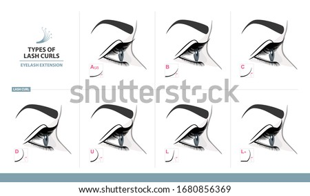 Types of Lash Curls.  Eyelash Extension for Most Attractive Look. Woman Eye with Long Thick Eyelashes. Side View. Macro, Selective Focus. Guide. Infographic Vector Illustration  #1680856369