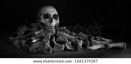 The skull on pile of bone on black background / Select focus, Still life image, space for text, adjustment color and size, for banner, cover, header and background