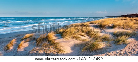 Panorama of Stormy Sea and Beach with Coastal Dunes Royalty-Free Stock Photo #1681518499