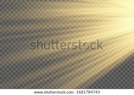 Vector sunlight special lens flare light effect. Sun flash shining with rays and spotlight. Flares and gleams rounded and hexagonal shapes. Isolated on transparent background #1681784743