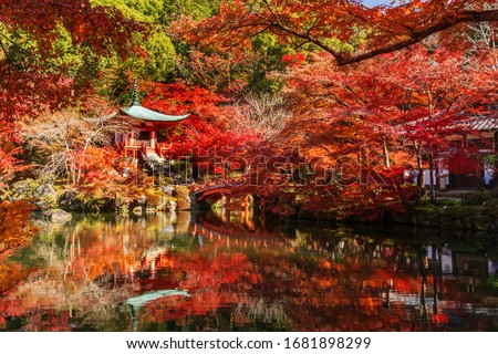 Kyoto's autumn parks are famous for their red maples