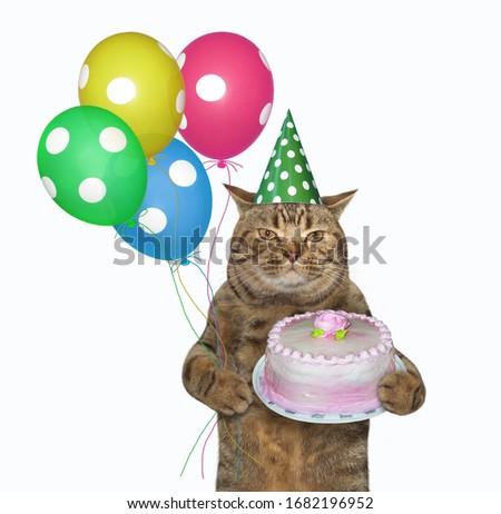 The beige cat in a birthday hat is holding multi-colored balloons and a holiday cake with a rose. White background. Isolated.