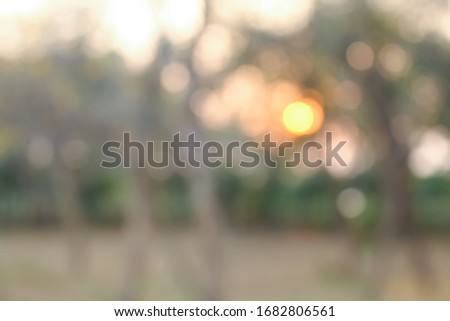 Abstract nature background with bokeh #1682806561