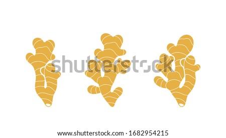 Ginger logo. Isolated ginger on white background Royalty-Free Stock Photo #1682954215