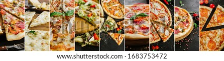 Collage of different pizza variety #1683753472