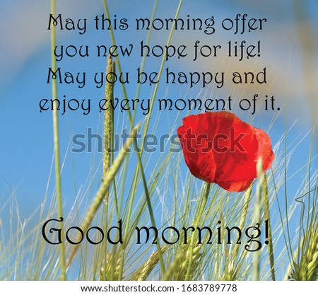Good morning greeting images with quotes.