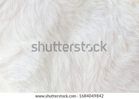 Cool white background, abstract pattern, close-up Royalty-Free Stock Photo #1684049842