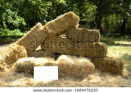 photo zone with hay bricks on the nature. bricks from hay in the sunny area, photo zone with hay bricks, background in a park of bricks from hay in the summer #1684476220