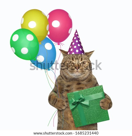 The beige cat in a birthday hat is holding multi-colored balloons and a green gift box. White background. Isolated.