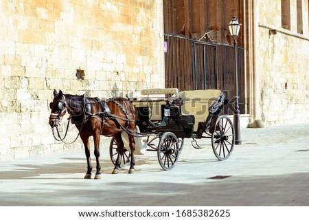 Horse and carriage ride in Palma de Mallorca Royalty-Free Stock Photo #1685382625