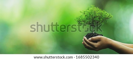 Tree planting on volunteer family's hands for eco friendly and corporate social responsibility campaign concept #1685502340