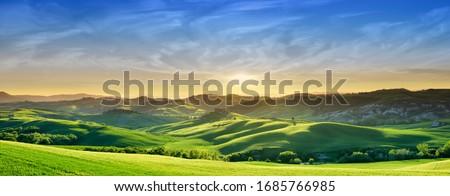Panorama, Italian beautiful landscape, green rolling Tuscan fields in warm light of the setting sun Royalty-Free Stock Photo #1685766985