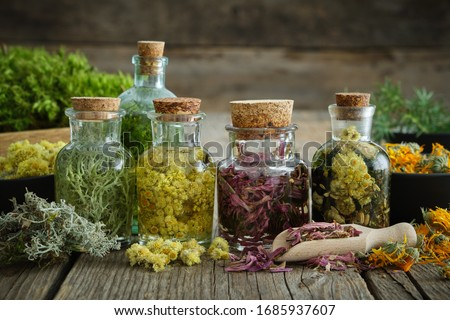 Bottles of tincture or infusion of healthy medicinal herbs and healing plants on wooden table. Herbal medicine. #1685937607