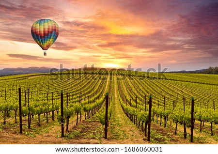 Beautiful Sunrise Sky, Mountains and Hot Air Balloon in Napa Valley Wine Country Vineyards. Royalty-Free Stock Photo #1686060031