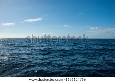 View of the sea horizon from the island of Tenerife. Texture of the sky and sea waves. A whale is hidden in the picture.