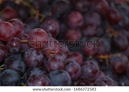 Healthy fruits Red wine grapes background/ dark grapes/ blue grapes/wine grapes,Red wine grapes background/dark grapes,blue grapes,Red Grape in a supermarket local market bunch of grapes ready to eat #1686372583