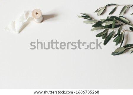 Floral composition of green olive tree leaves, branches and silk ribbon  isolated on white table background. Botany styled stock flat lay image, top view. Copy space, no people. Summer wedding.