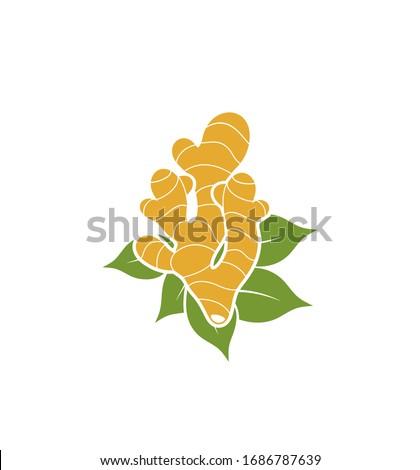 Ginger logo. Isolated ginger on white background Royalty-Free Stock Photo #1686787639