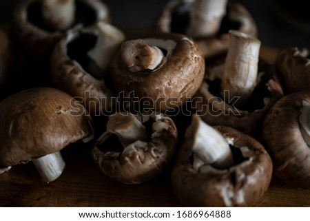 a lot of brown mushrooms king champignon in the kitchen