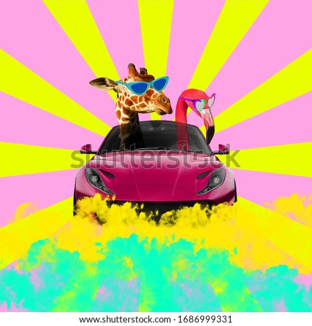 Giraffe and flamingo wearing sunglasses and driving car. Sunburst background.