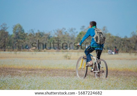 A boy is going home by his bicycle, crossing a flower garden. #1687224682